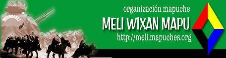 Logo_Pagina_Meli_Wixan_Mapu-20203